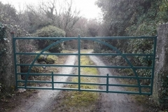 Traditional Gate 018